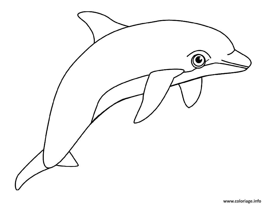 Dessin dauphin animal aquatique Coloriage Gratuit à Imprimer