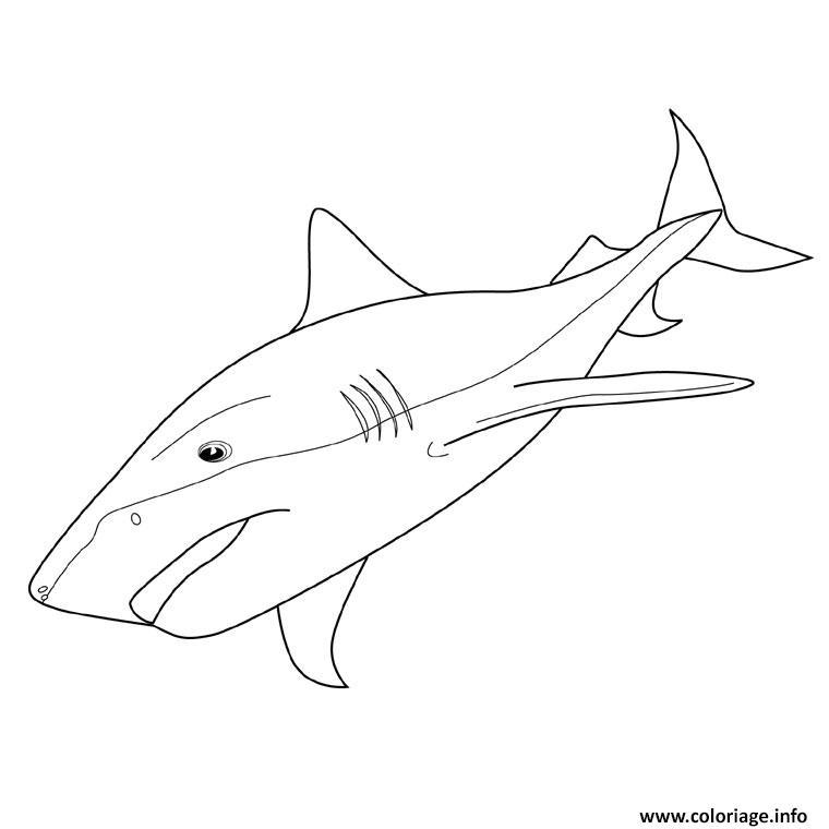Dessin requin tigre Coloriage Gratuit à Imprimer