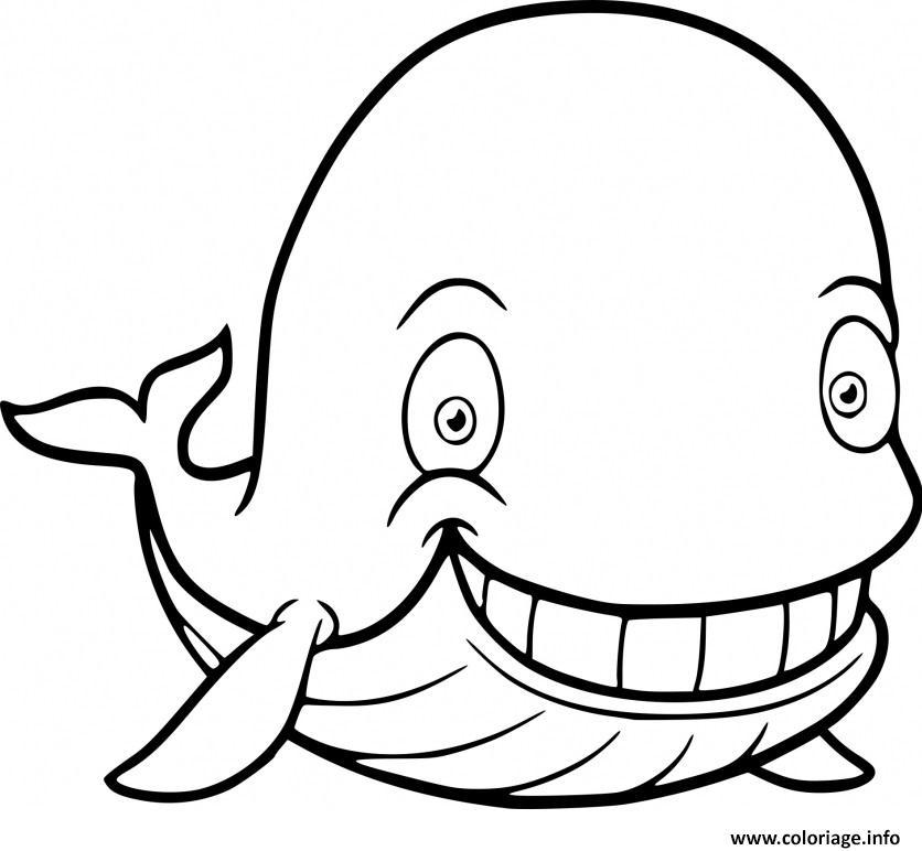 Dessin baleine bleue Coloriage Gratuit à Imprimer