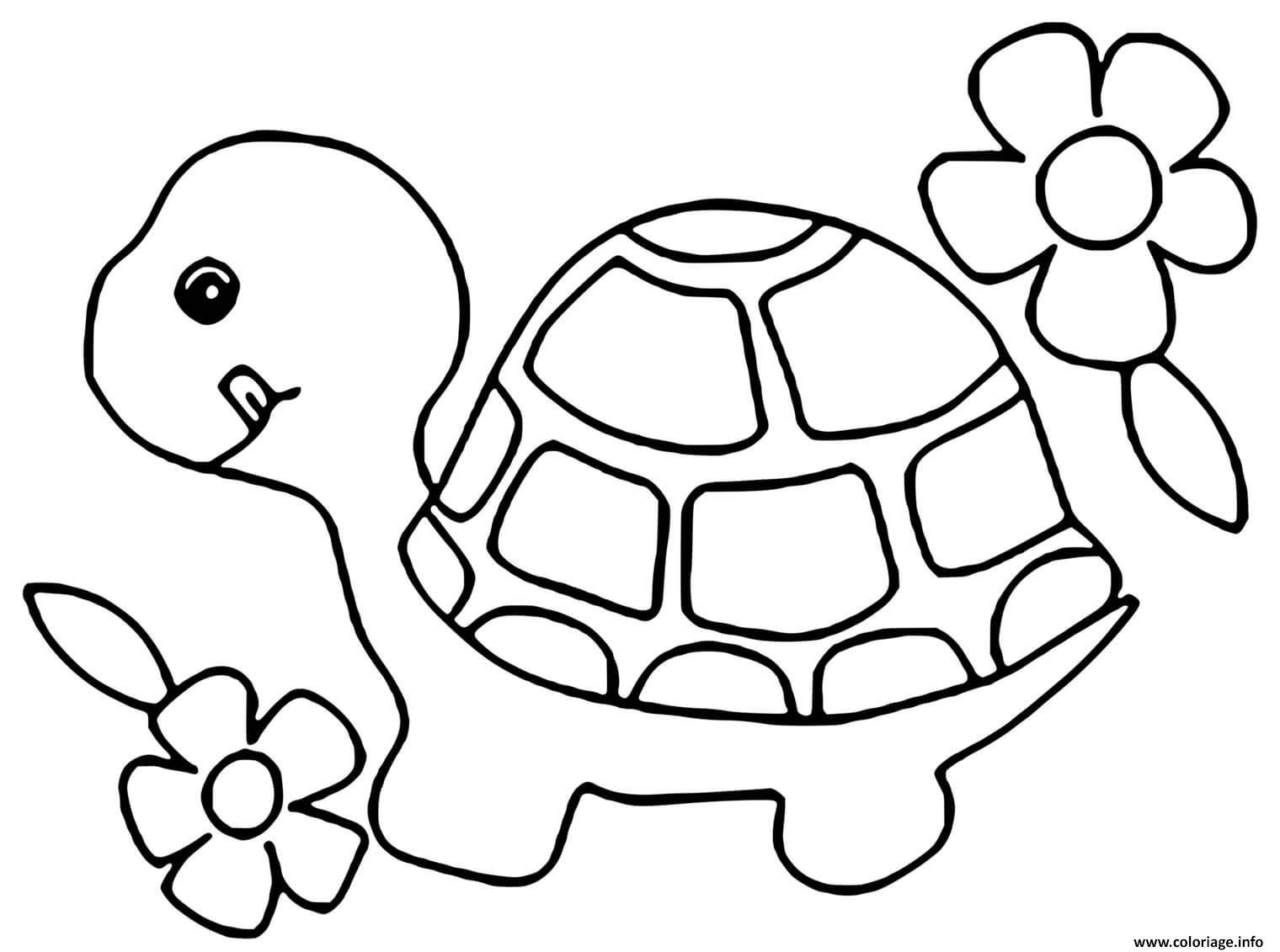Dessin bebe tortue avec des fleurs Coloriage Gratuit à Imprimer