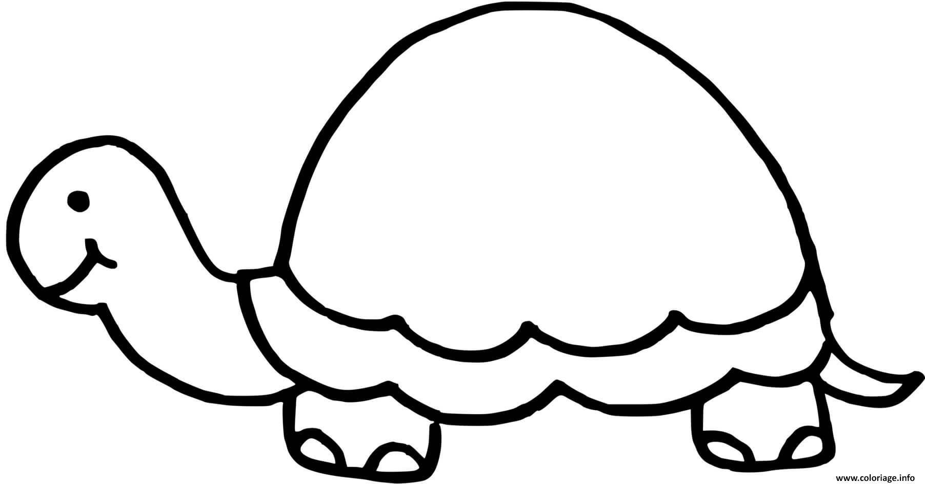 Dessin tortue avec une carapace sans dessin Coloriage Gratuit à Imprimer