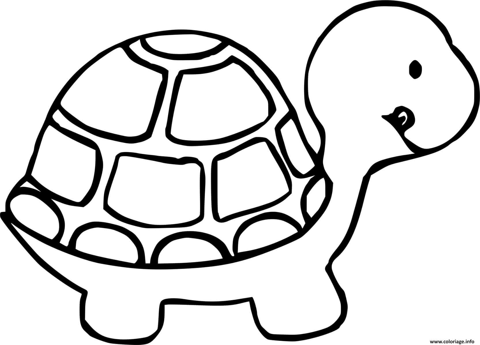 Dessin tortue de profil Coloriage Gratuit à Imprimer
