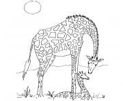 giraffe dessin à colorier