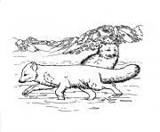 animaux et nature dessin à colorier