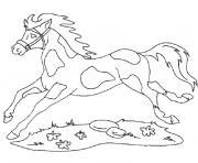 cheval et chien dessin à colorier