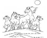 Coloriage cheval spirit