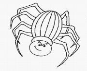 halloween araignee dessin à colorier