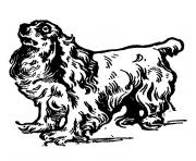 Coloriage chien cavalier king charles