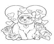 chaton siamois dessin à colorier