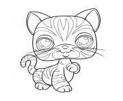 Coloriage bleu russe chat maltais dessin - Petshop chaton ...
