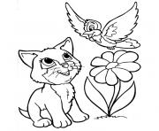 chat oiseau fleur dessin à colorier