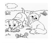 chaton et chiot dessin à colorier