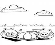 angry birds font un picnic cuire un oeuf dessin à colorier