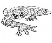 Coloriage spiderman 195