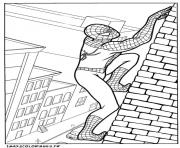 Coloriage spiderman 244