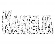 Kamelia dessin à colorier