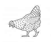 une poule dessin à colorier