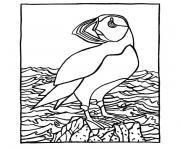 oiseaux marins dessin à colorier