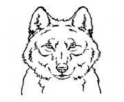 tete de loup dessin à colorier