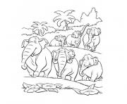 Coloriage jungle et elephants