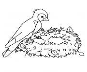 nid oiseau dessin à colorier