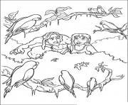 tarzan 144 dessin à colorier