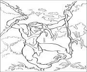 tarzan 29 dessin à colorier