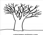 arbre 24 dessin à colorier