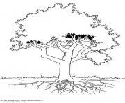 arbre 171 dessin à colorier