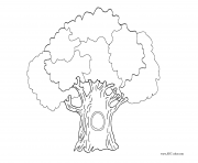 arbre 99 dessin à colorier