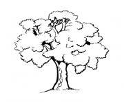 Coloriage arbre 5 dessin