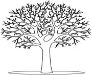 arbre 13 dessin à colorier