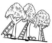 arbre 98 dessin à colorier