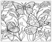 difficile papillons dessin à colorier