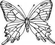 Coloriage papillon 22