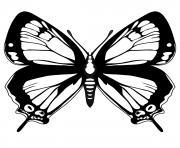 papillon 232 dessin à colorier