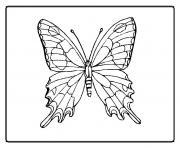 papillon 33 dessin à colorier