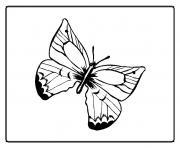 papillon 45 dessin à colorier