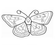 Coloriage papillon pet shop