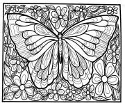 Coloriage adulte difficile grand papillon