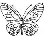 papillon 148 dessin à colorier