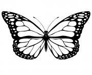 papillon 3 dessin à colorier