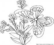 papillon 94 dessin à colorier