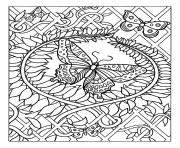 difficile papillon dessin à colorier