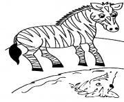 zebre 17 dessin à colorier