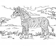 zebre 7 dessin à colorier