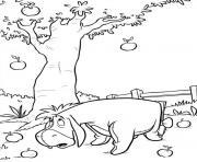 image ane 144 dessin à colorier