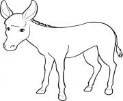 image ane 8 dessin à colorier