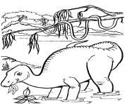 Coloriage dinosaure 212 dessin