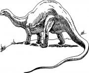 dinosaure 268 dessin à colorier